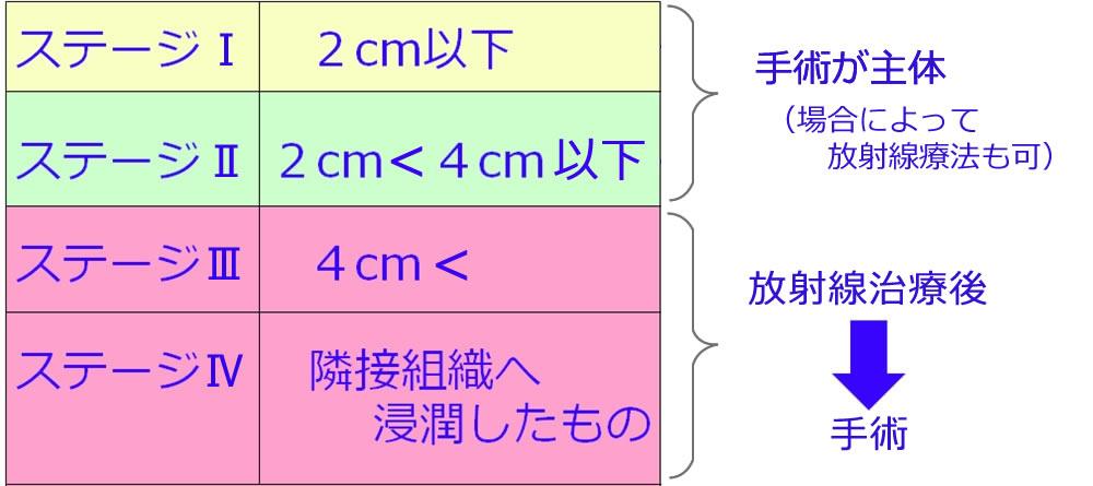 http://www.oralcancer.jp/%E3%82%B9%E3%83%86%E3%83%BC%E3%82%B8%E5%88%A5%201000.jpg